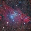 Ngc 2264-nébuleuse du cône- chilescope,                                astromat89