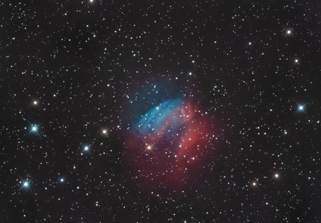 SH2-174 : Valentine Rose Nebula,                                Jordane Marlière