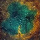 IC 1396 - Elephant Trunk Nebula Wide Field,                                Timothy Martin & Nic Patridge