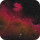 IC 2177 - Seagull Nebula - this time in CFHT Palette,                                Steve Milne
