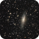 Deer Lick Group and Stephan's Quintet,                                Doc_HighCo