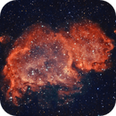 Soul Nebula Bicolor,                                Peppe.ct