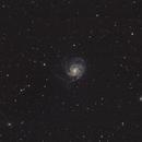 M101,                                cdavmd