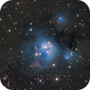 NGC 7129 in Cepheus,                                Steve Milne