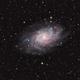 The Triangulum Galaxy – M33 (2017),                                Kirk