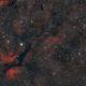 Large field on Sadr and crescent nebula,                                -Amenophis-