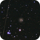 NGC3184,                                Paolo Manicardi