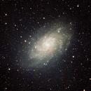 M33 Triangulum Galaxy RASA8,                                WAskywatcher