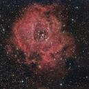 NGC 2244 - Rosseta Nebula,                                Juan P. Ramón