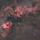 Wide field on Cygnus,                                Mikael De Ketelaere
