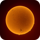 April Sun,                                Onur Atilgan