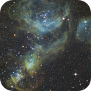 NGC1968 and NGC1955 - dubbed the Pirate Monkey Nebula,                                ChrisG_BNE