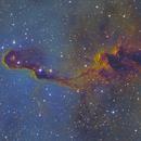 IC1396-Elephant's Trump Nebula,                                Astroshoot31