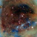 NGC 2244 Rosette Nebula Core, Hubble Palette,                                Eric Coles (coles44)