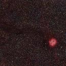 IC 5146 The Cocoon Nebula,                                Nucdoc