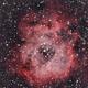 Rosette Nebula,                                pilotlc