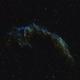 NGC 6992 Eastern Veil Nebula SHO,                                William Fewster