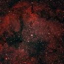 The Elephant Trunk Nebula - IC1396,                                Mike Markiw