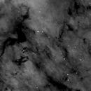 NGC 7000, Section, Ha,                                Stephen Garretson