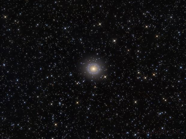 NGC 7217  in Peg,                                GJL