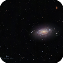 M63 - The Sunflower Galaxy,                                Gordon Hansen