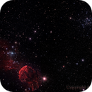 IC443 & M35,                                Chuck Manges