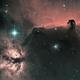 Horsehead nebula (IC434) & Flame Nebula (NGC 2024) Ha-HOO,                                Olivier Ravayrol