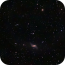 NGC 660 lenticular galaxy,                                Roger Menard