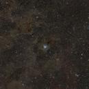 Iris Nebula and surrounding dark nebulae,                                bbright