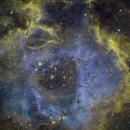 NGC 2244 Rosette Nebula SHO,                                Erik Guneriussen