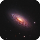 NGC 3675,                                Kyle Butler
