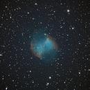 Dumbbell Nebula (M27),                                Nadir Benhamouda