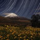 Damavand peak,                                Amir H. Abolfath
