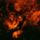 IC 1318 in H-Alpha,                                Hans-Peter Olschewski