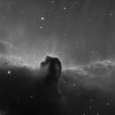 IC434 - Horsehead Nebula,                                bingocrepuscule