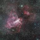 M17 - Omega (aka Swan) Nebula,                                Richard Bratt