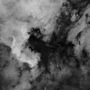 NGC7000 IC5070,                                Juergen