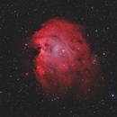 NGC 2174 | Monkey Head Nebula,                                Robert Schlenz