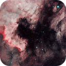 North America and Pelican Nebula Detail,                                Michael Southam