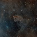 Nebulosa testa d aquila (Poss II),                                Gianluca Belgrado