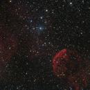 IC 443,                                Matteo Quadri