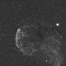 IC 443 Jellyfish Nebula-Ha,                                Adel Kildeev