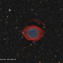 NGC7393 - Helix Nebula,                                José Fco. del Agu...