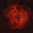 Rosette 2-28-14  HaRGB,                                Mo