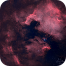 North America and Pelican Nebula (V1),                                aukropov