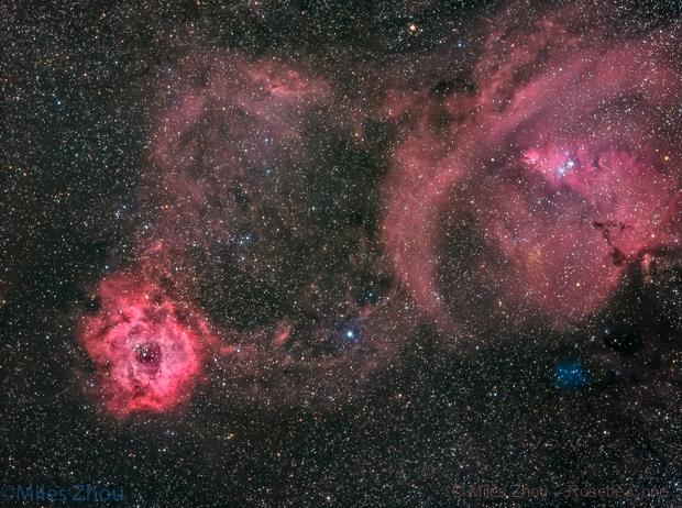 Rosette & Christmas Tree Nebulae,                                Miles Zhou