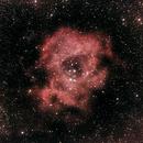 Rosette Nebula,                                PapaMcEuin