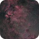 Nebula between Sadr and Eta Cygni,                                Yuichi Kawamoto