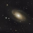 M81 Bodes Galaxy,                                scott1244