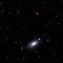 Sunflower Galaxy (M63),                                jsines